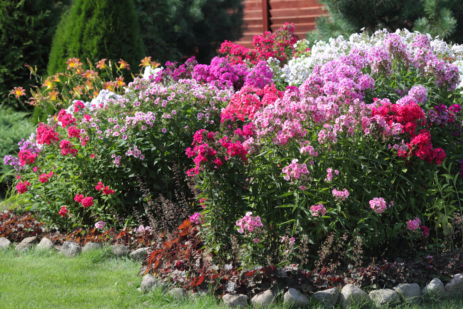 Starting Perennial Gardening Outside Fall Landscaping Growing