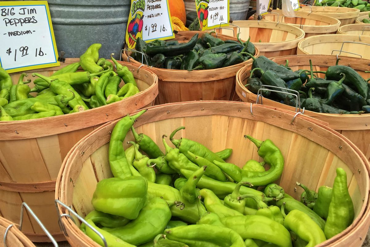 13th Annual Chili Pepper Roast | Local Produce | Craft Beers | Jolly